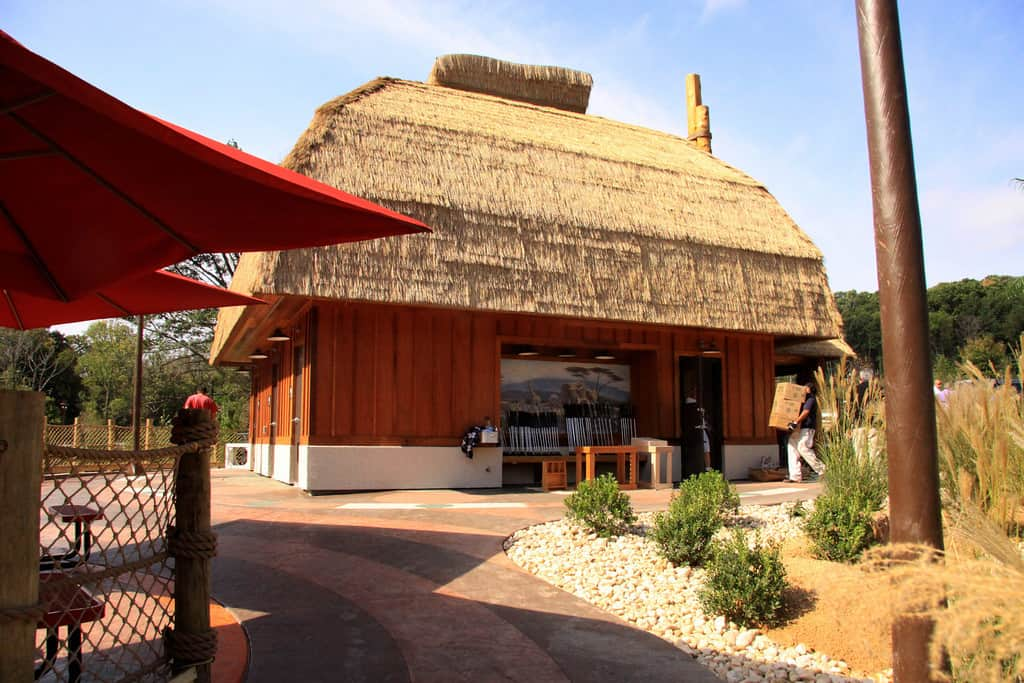 Custom Thatched Roof Structure